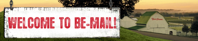 WELCOME TO BE-MAIL